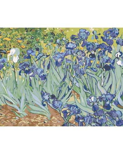 Malowanie po numerach - Irysy (Van Gogh)