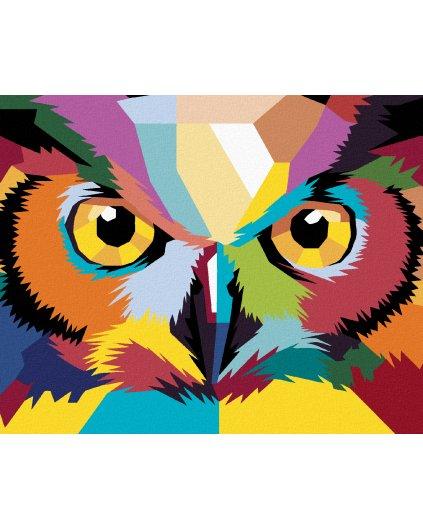 Malowanie po numerach - SOWA POP ART