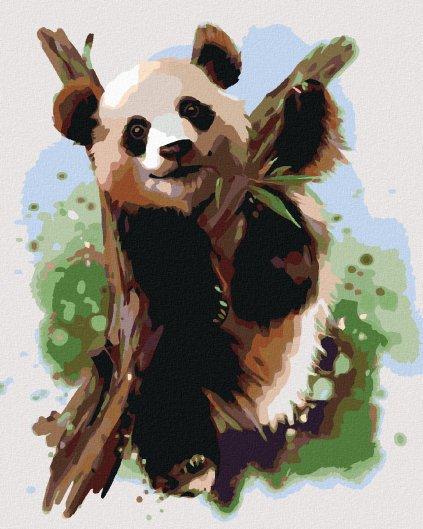 Maľovanie podľa čísel - PANDA NA VETVE