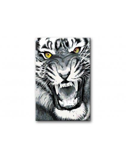 Maľovanie podľa čísel - NAŠTVANÝ TIGER