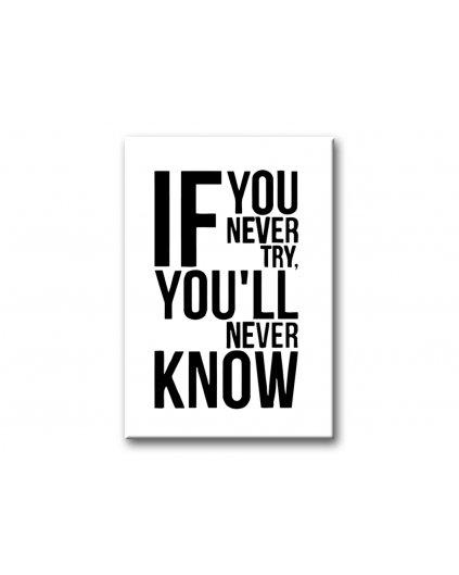 Maľovanie podľa čísel - IF YOU NEVER TRY...