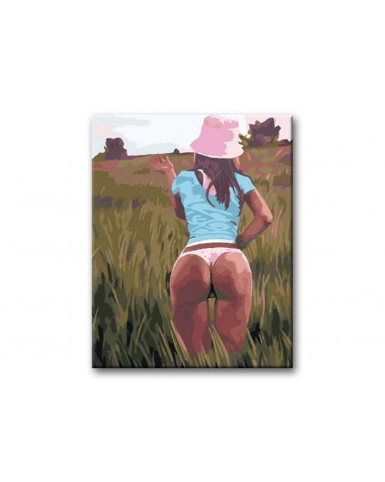 Maľovanie podľa čísel - KRÁSNA ŽENA NA LÚKE