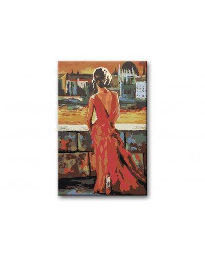 Maľovanie podľa čísel - KRÁSNA ŽENA VYZERÁ