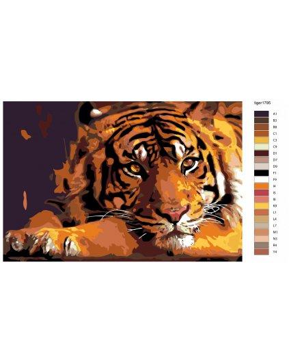 Maľovanie podľa čísel - KĽUDNÝ TIGER
