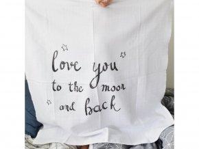 2495 osuska love you to the moon