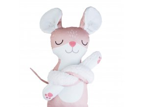 kamarad hlavni myška