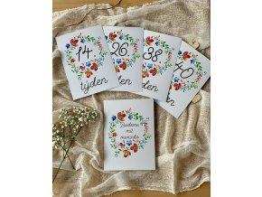 TĚHOTENSKÉ milníkové kartičky květinky 35ks