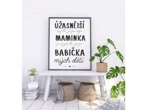 """Plakát """"Pro Babičku"""" (Velikost a provedení S (A4 21x29,7cm) s rámečkem)"""
