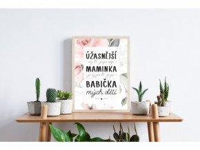 """Plakát """"Pro Babičku s květinami"""" (Velikost a provedení S (A4 21x29,7cm) s rámečkem)"""