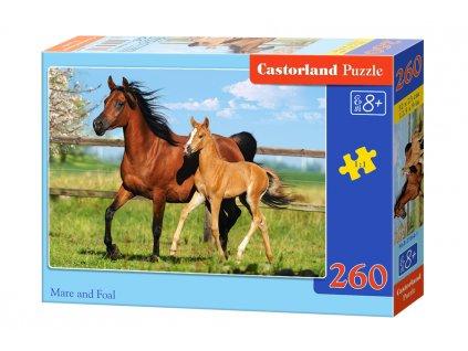 Castorland puzzle Kobyla a žriebätko 260 dielikov