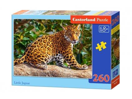 Castorland puzzle Malý jaguár - 260 dielikov