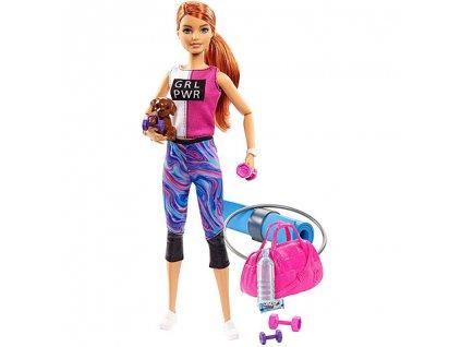 Mattel Barbie - Fitness bábika s doplnkami