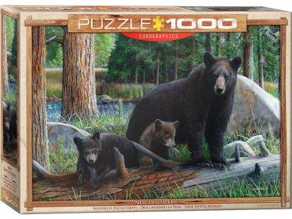 Eurographics puzzle Medvede 1000 dielikov