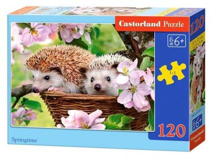 Castorland puzzle Ježkovia 120 dielikov