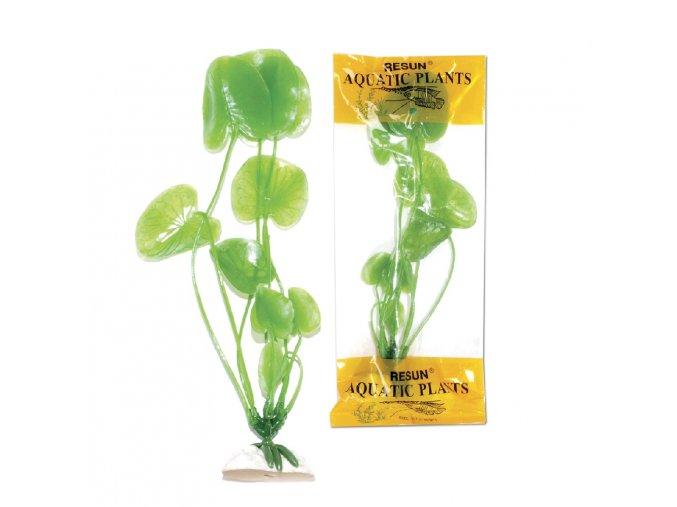 rostlina uh 20cm