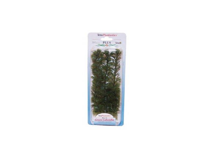 Rostlina  UH 18cm (Cabomba )