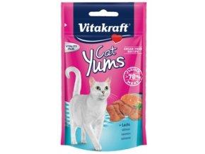 Cat Yums losos