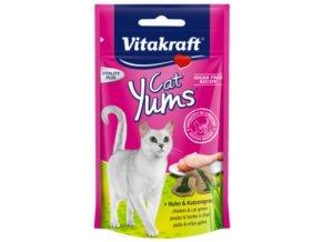 Cat Yums kuře s trávou