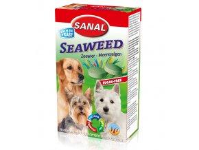 sanal seaweed 100g