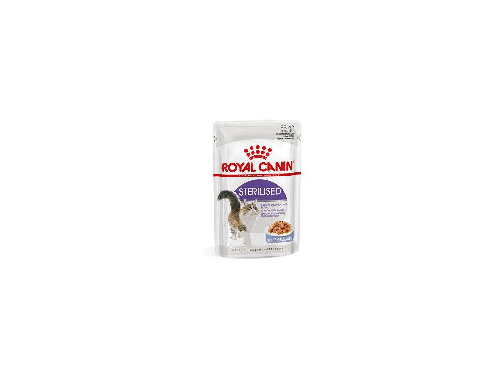 royal canin kocka