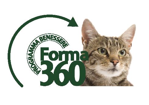 PET360-KOCKA-ikonky-Forma-01