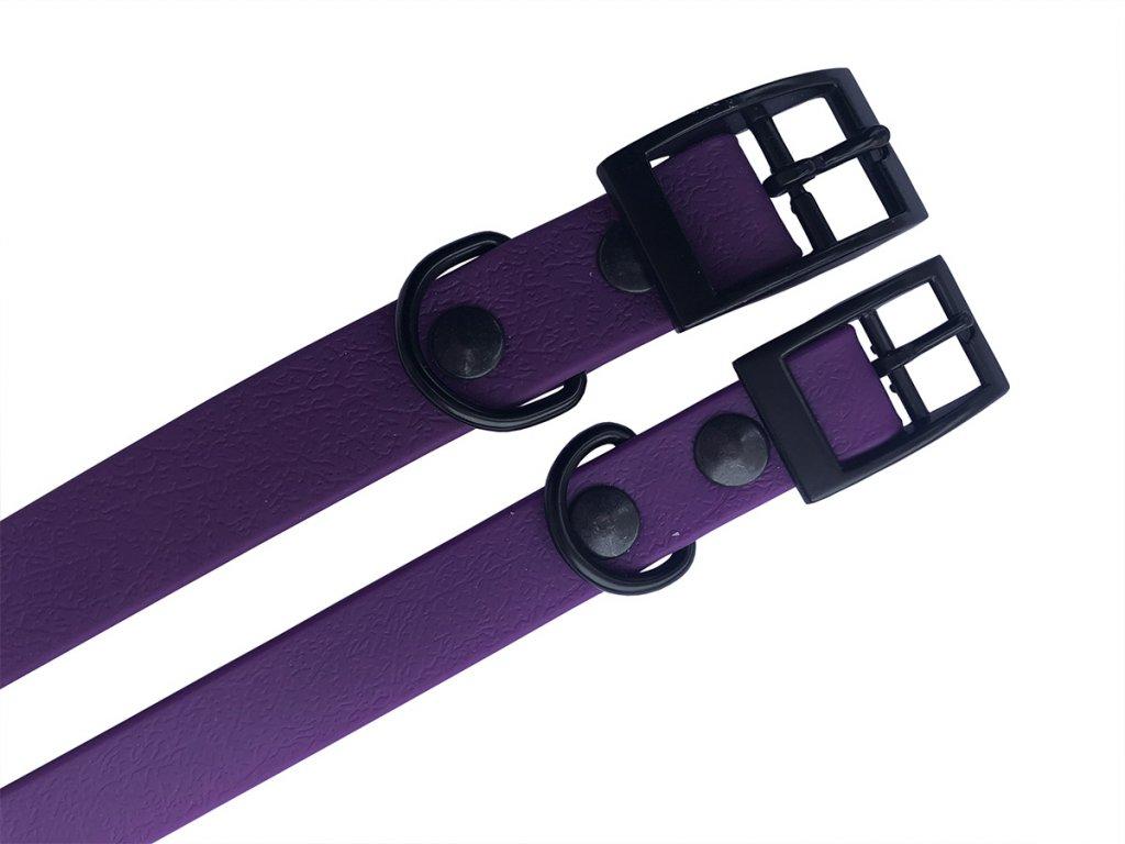 purpurovy