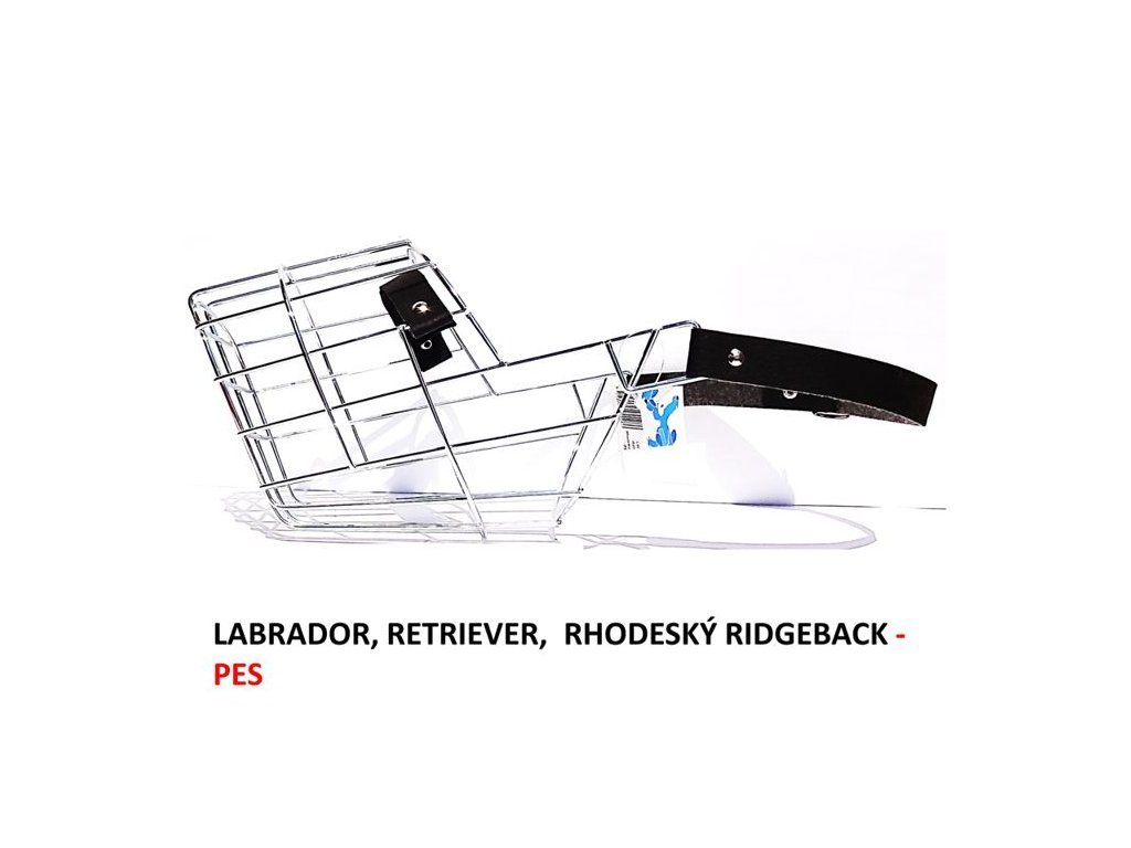 nahubek-kovovy-labrador--retriever--rhodesky-ridgeback-pes