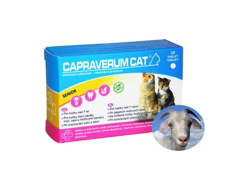 capraverum-cat-senior