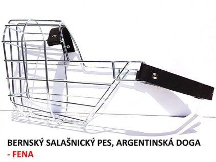 nahubek kovovy bernsky salasnicky pes argentinska doga fena