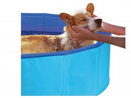 bazenek pro psa