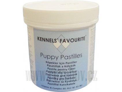 kennels favourite stene