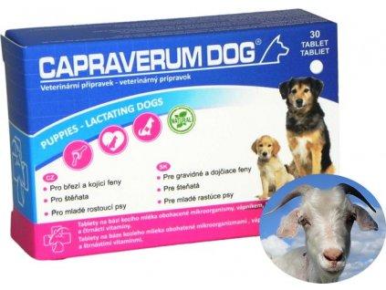 capraverum-dog-puppies-lactating-dogs-30-tablet