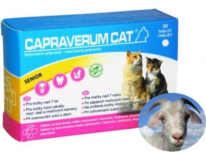 capraverum-cat-senior