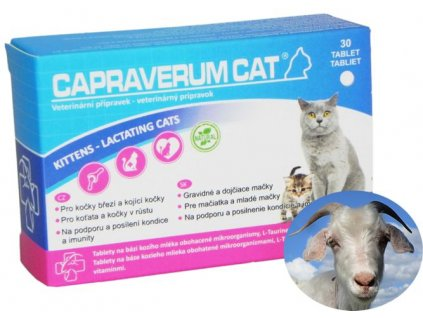 capraverum-cat-kittens-lactating-cats